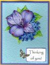 lavender blue flowers