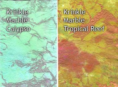 calypso and tropical reef