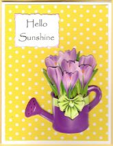 sunshine watering cans