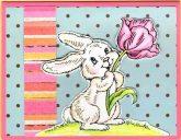 tulip bunny