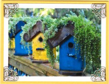 bird house row