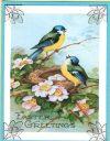 easter blue birds