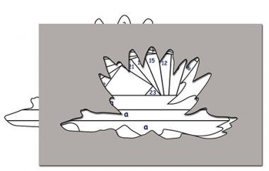 pattern for water lilly