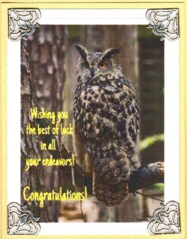 wishing owl